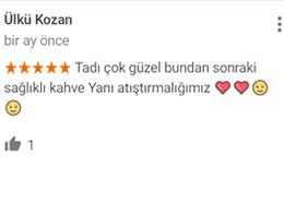 Ülkü Kozan